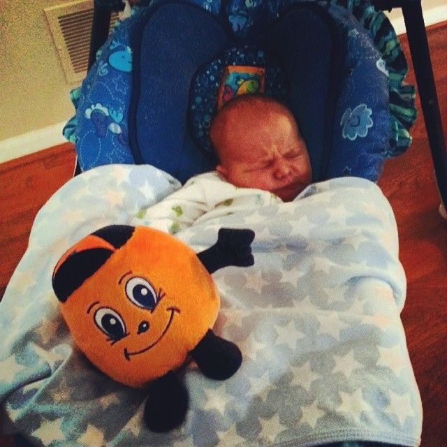 """Instagram photo by @Jason Anderson   """"5 days old but he already has his loyalties."""""""