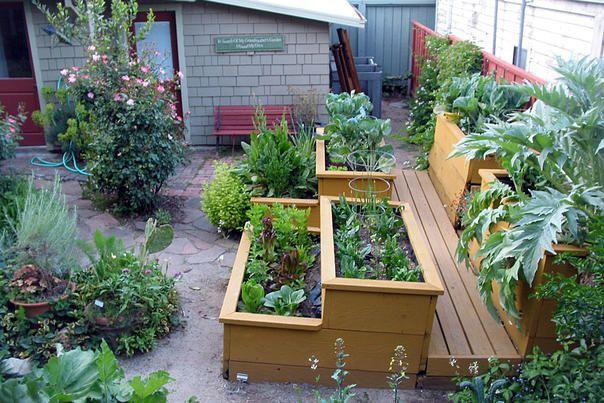 GardenSaturday