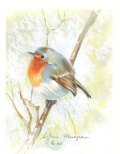 Rouge gorge boule 10 robins art pinterest robins and for Tattoo shops in greeley
