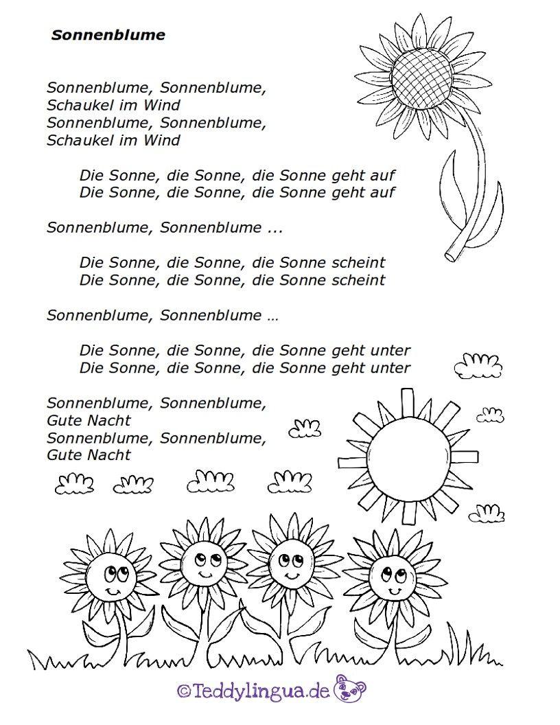 Sonnenblume | Ovi német | Pinterest | Kindergarten, Nursery teacher ...