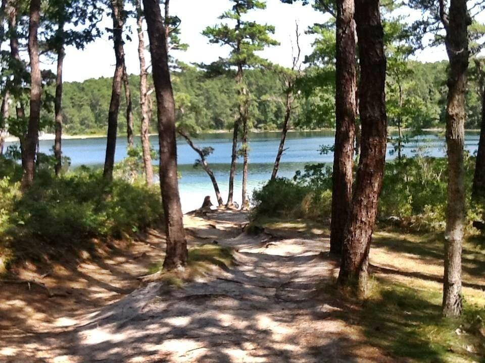 Cape Cod Summer Vacation Rentals Part - 24: Wellfleet Summer Vacation Rental Home In Cape Cod. Miles From Cahoon Hollow  Beach