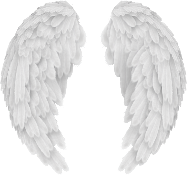 Discover And Download Full Size Wings Png Images Free Download Angel Wings Png Clip Transparent Background Angel Wings Png Angel Wings Png Wings Png Wings