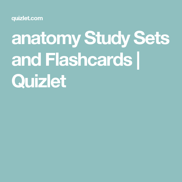 anatomy Study Sets and Flashcards | Quizlet | Anatomy/Physiology ...