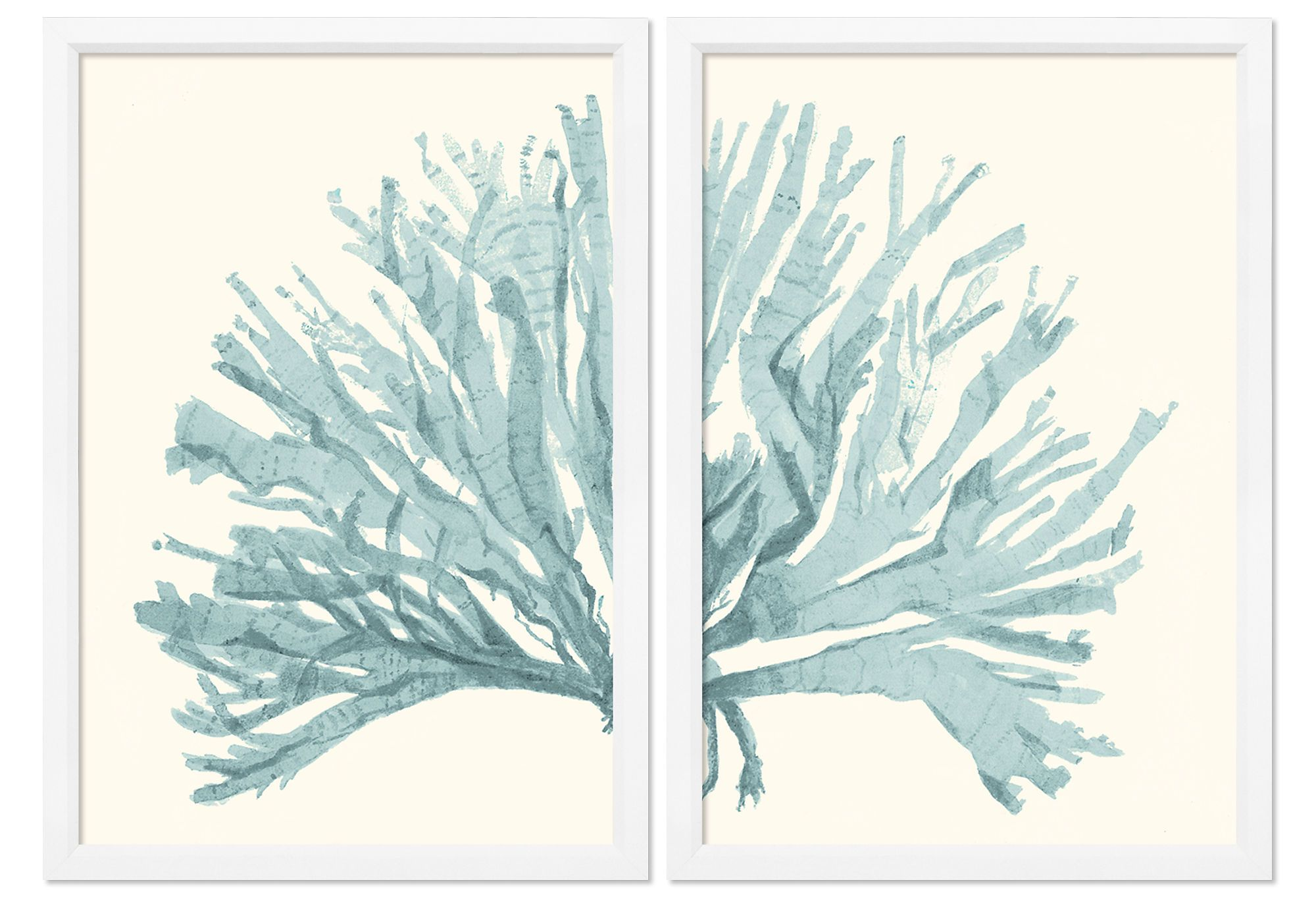 Island living miranda baker teal blue coral diptych imagery