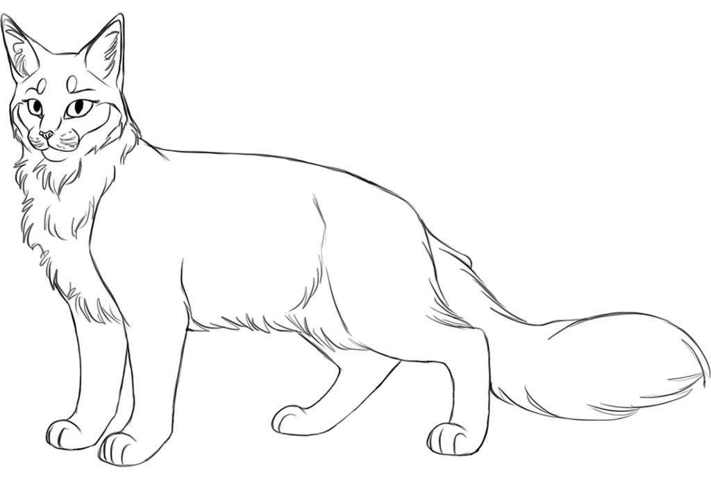 Adoptable bases warriors amino in 2020 warrior cats