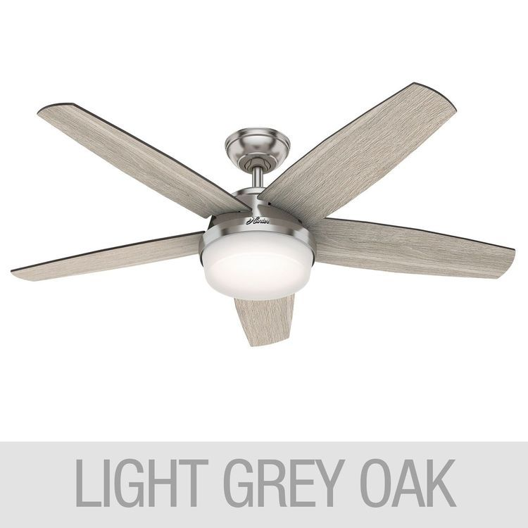 Hunter Led 52 Avia Ii Ceiling Fan Modern Ceiling Fan Gray