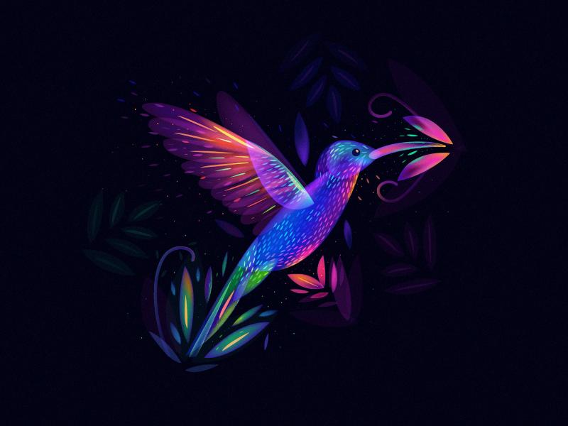 Colibri World Hummingbird Art Humming Bird Art Hummingbird Wallpaper