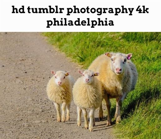hd tumblr photography 4k philadelphia 1203 20180909114824 46
