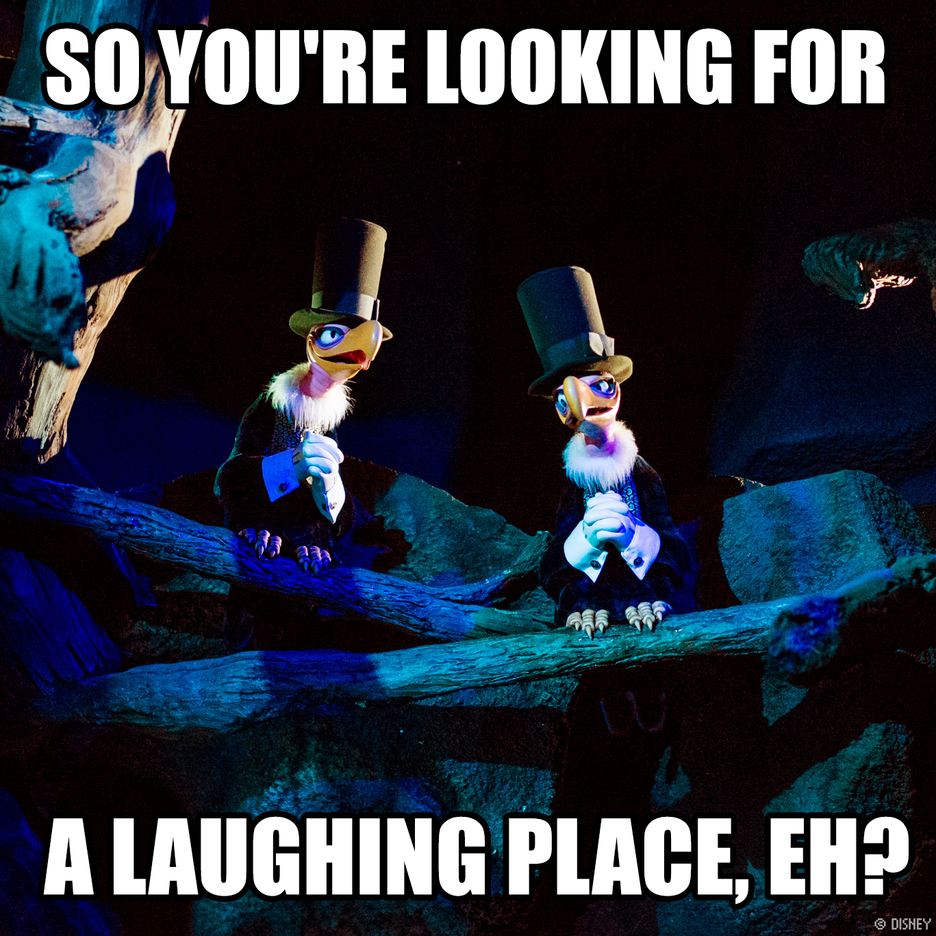 Favorite quote from Splash Mountain at Walt Disney World ...