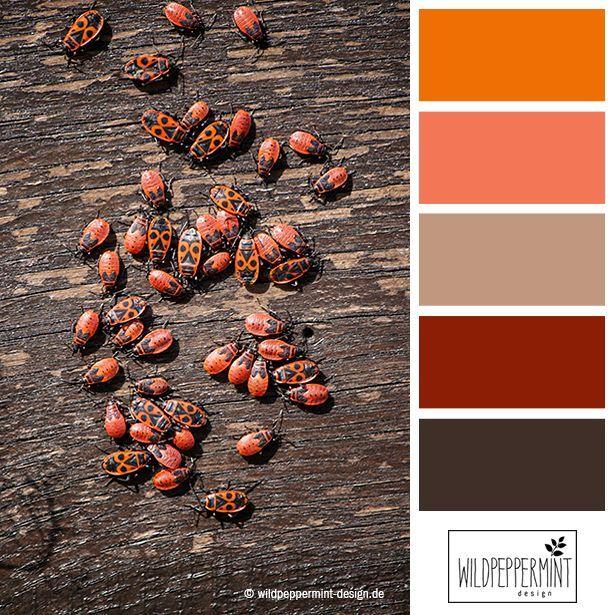 Farbpalette #Herbst, Warme Herbstfarben, Farbinspiration