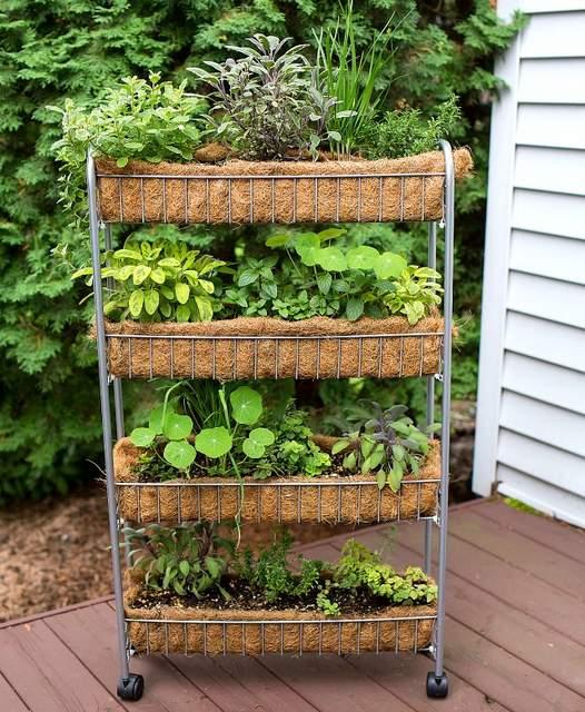 Vertical Garden Diy Small Herb Gardens, Small Herb Garden Ideas