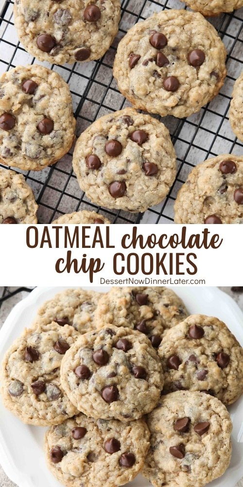 Oatmeal Chocolate Chip Cookies | Dessert Now, Dinner Later!