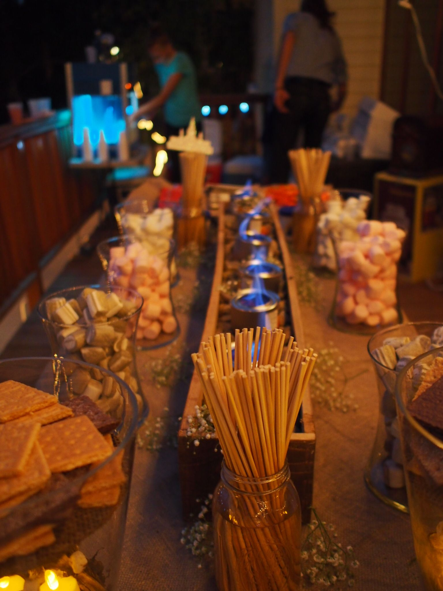 S'mores Bar. Wedding Desserts. Marshmallows. Fire Trench