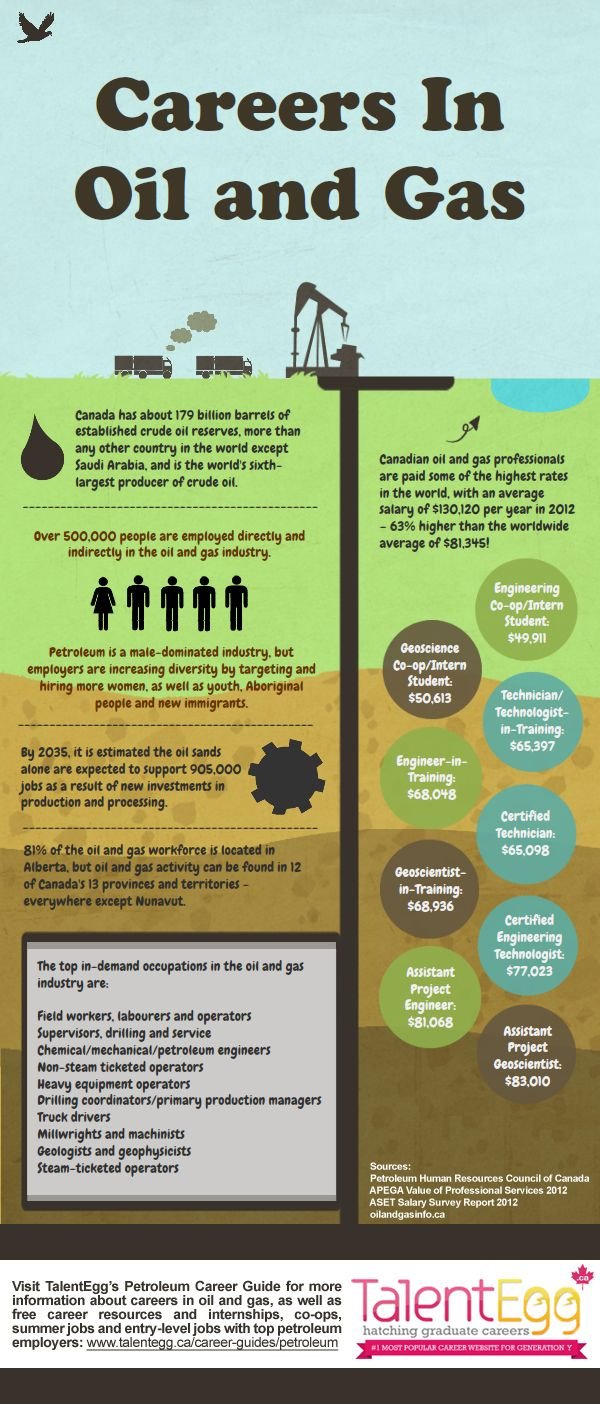 Infographic Drilling Deeper Into Careers In The Oil And