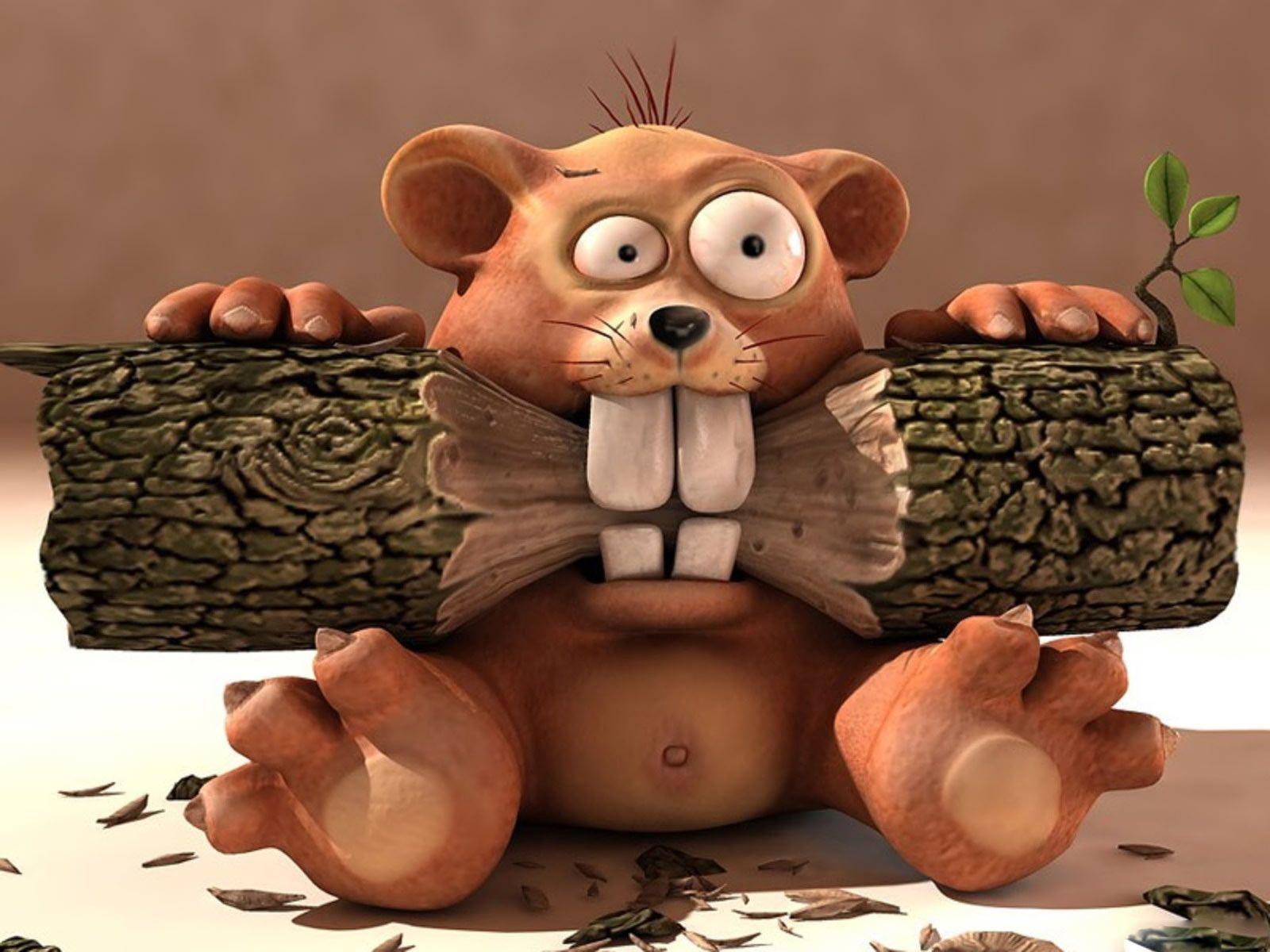 cute baby beaver all things beavers pinterest baby beaver