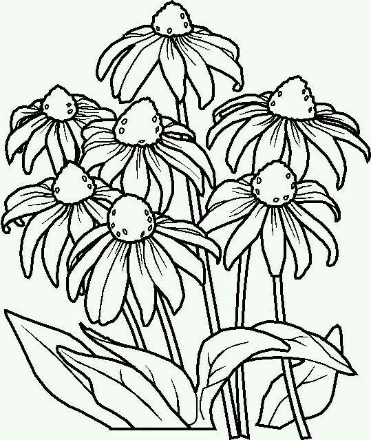 Pin De Marina Gonzalez En Dibujos