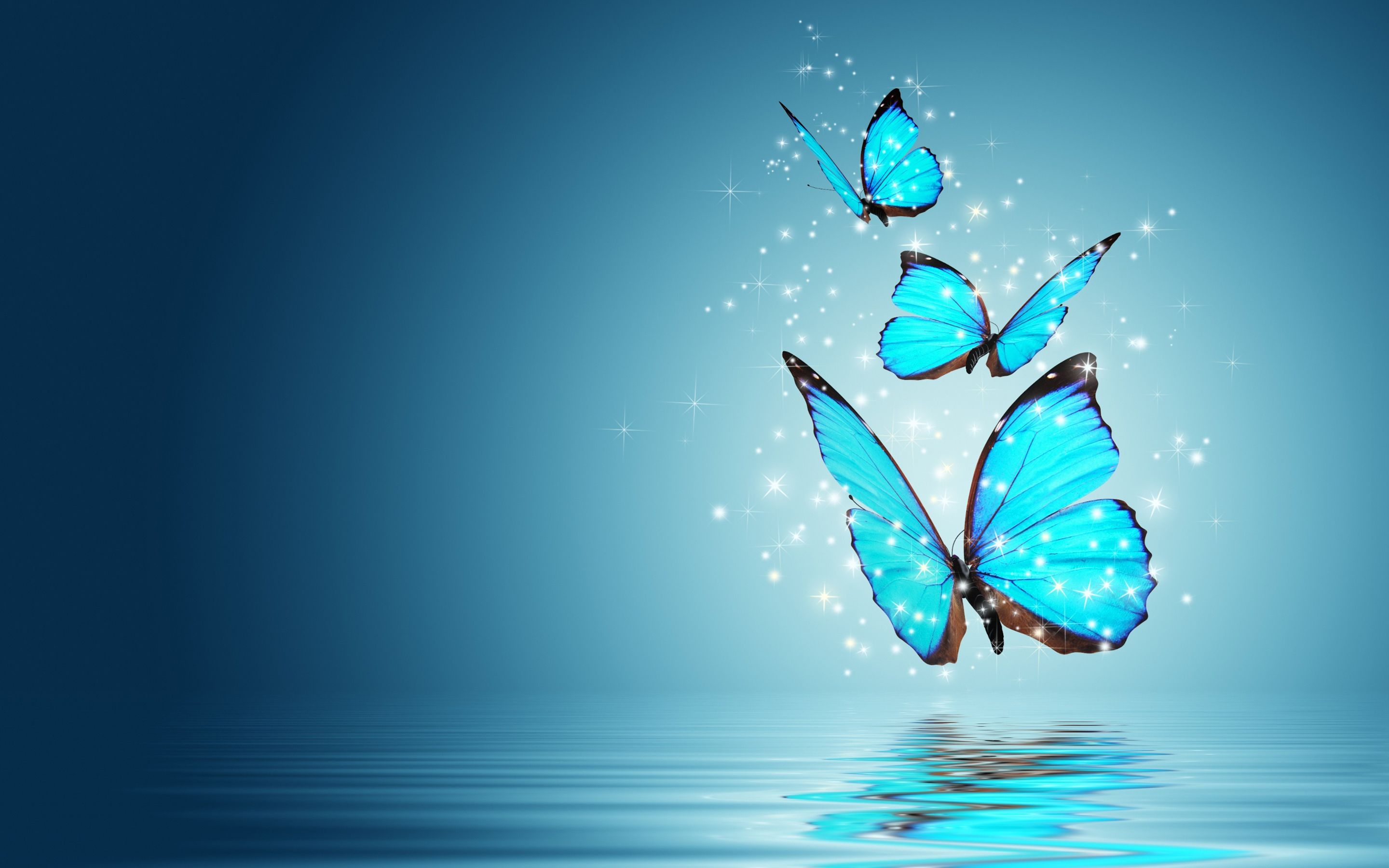 blue butterfly water reflection | the best wallpaper backgrounds