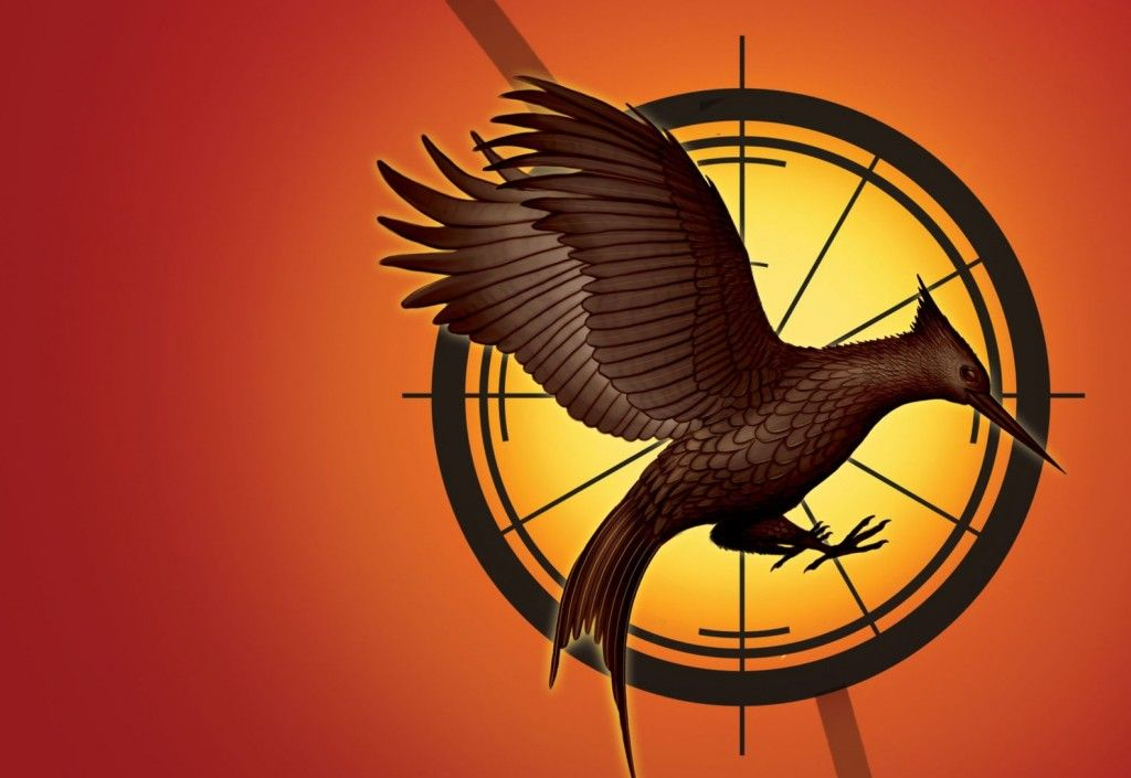 Symbol Catching Fire Pinterest Catching Fire Hunger Games And