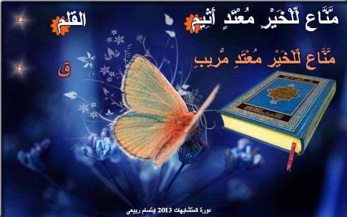 Pin by Khaled Bahnasawy on ٦٨- سورة القلم   Blue butterfly ...