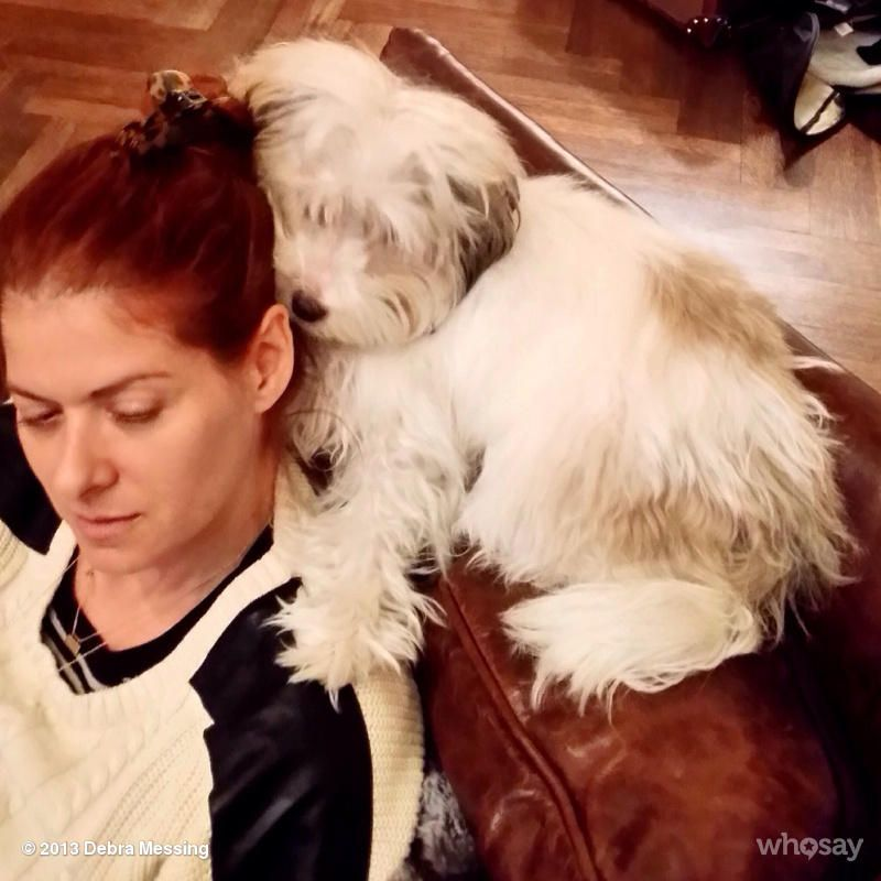 Debra Messing's Photo Dog probiotics, Cute dogs, Famous dogs