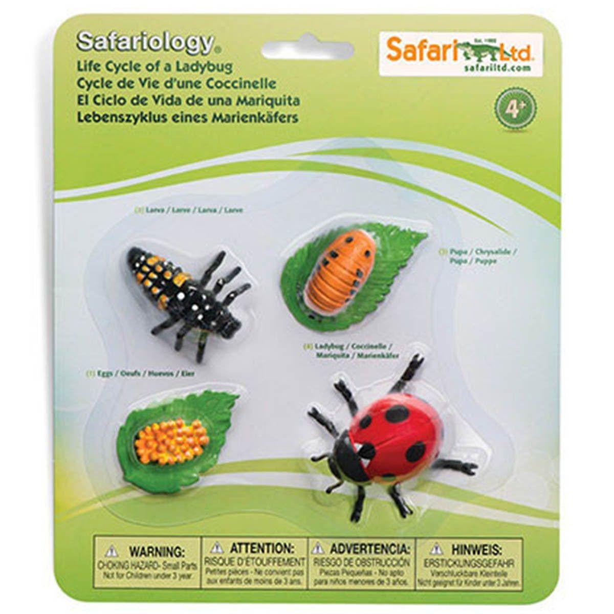 Life Cycle Of A Ladybug Figures Safari Ltd