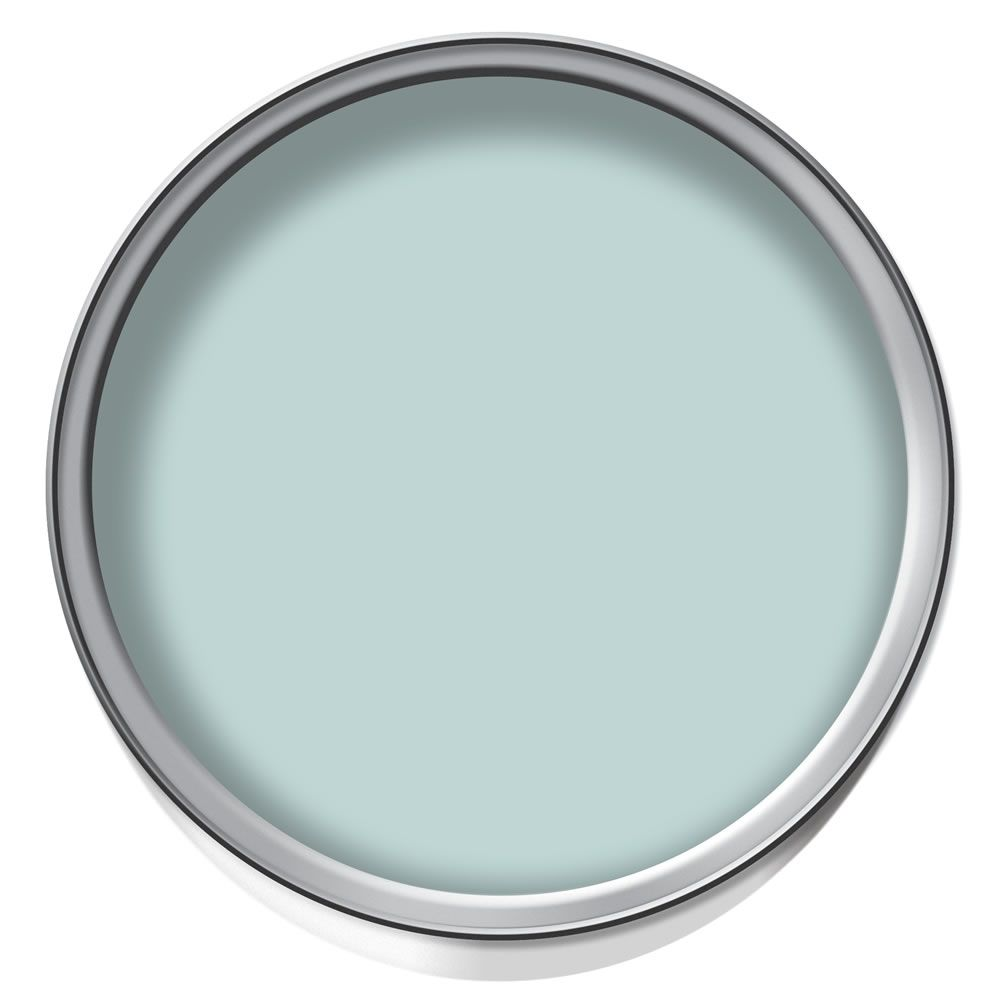 Dulux Matt Emulsion Paint Mint Macaroon 2.5L   NP   Pinterest ...