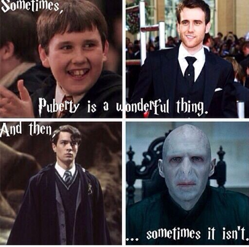 Sometimes Puberty Is A Wonderful Thing And Sometimes It Isn T Harry Potter Jokes Harry Potter Funny Hunger Games Memes