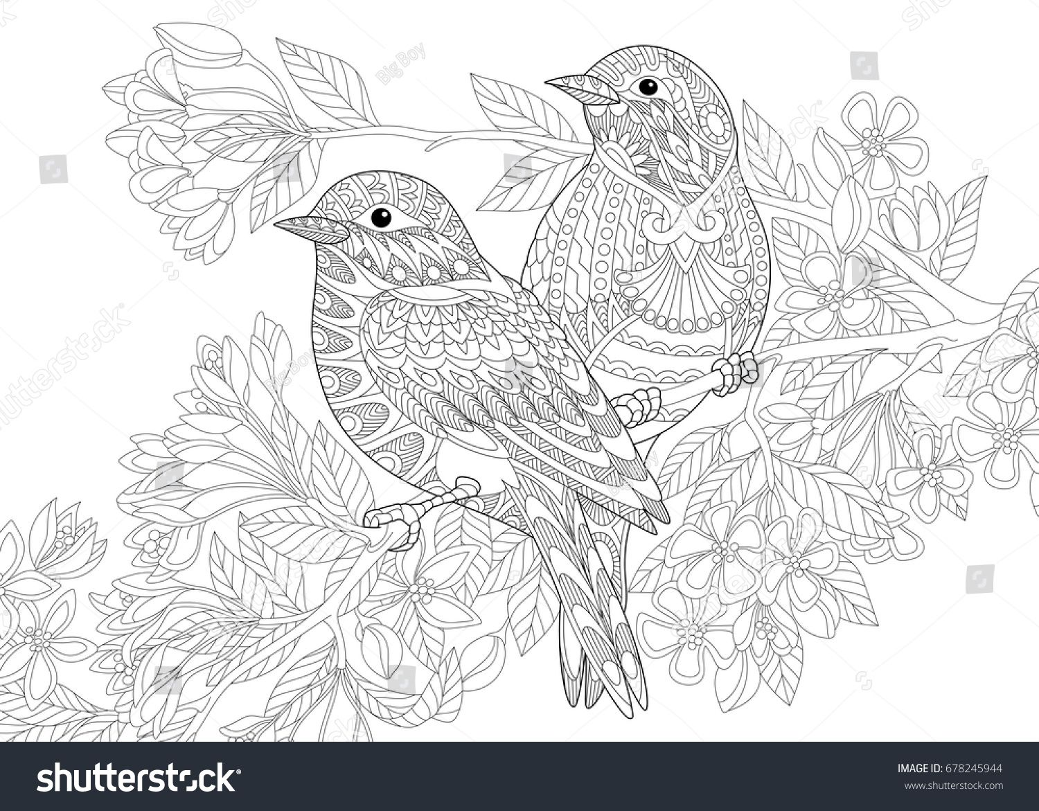 Coloring Page Of Two Birds Freehand Sketch Drawing For Adult