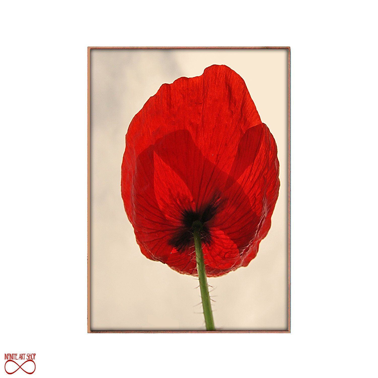Poppy Print Wall Art Print Set Of 2 Watercolor Flowers Red Etsy Poppy Wall Art Original Ink Painting Poppy Painting