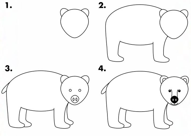 guided drawing bear google search
