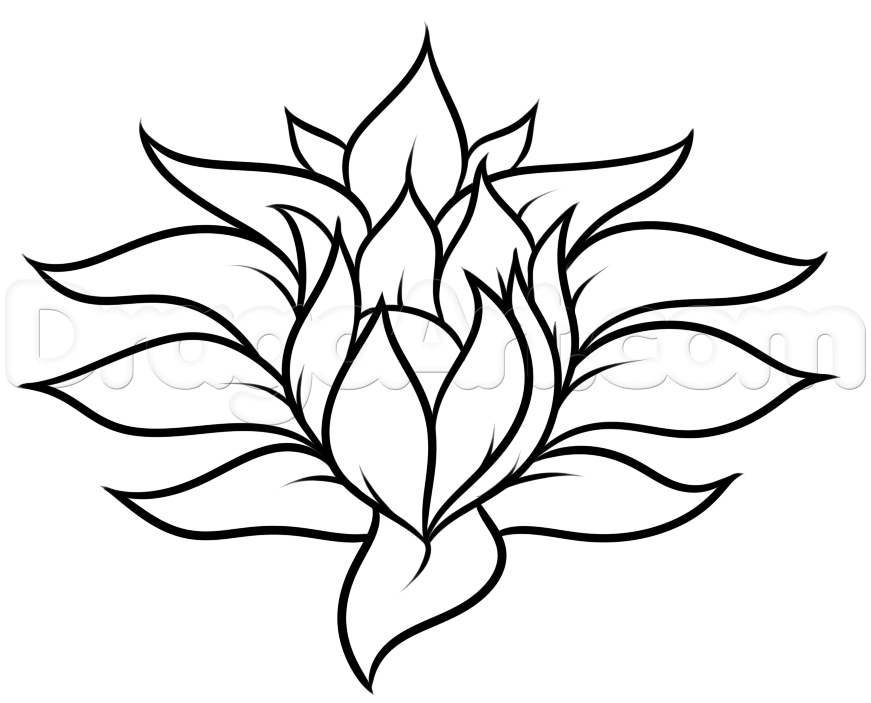 Drawing A Pretty Flower Easy Step 5