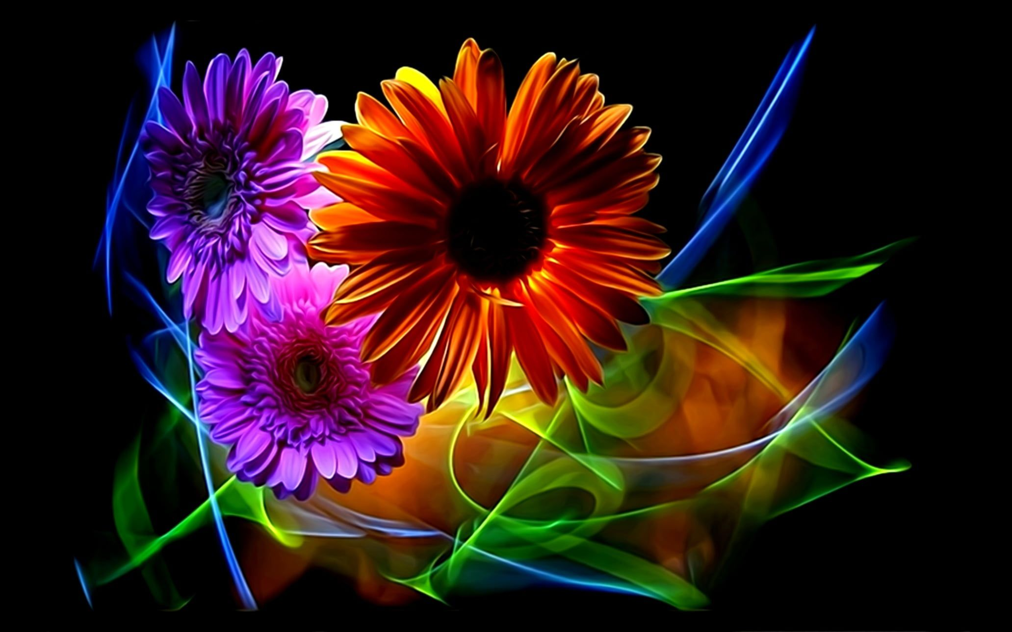 Flowers Abstraction Rendering Petals Black Background Gerbera Picture Neon Light Floral Fantasy Lines Of Light Neon Flowers Neon Flower Flower Wallpaper Coolest neon flower wallpaper