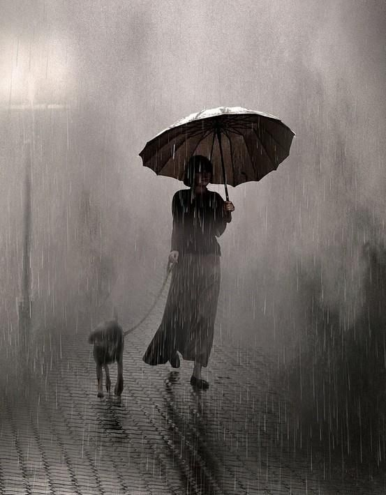 Paseando al perro bajo la lluvia.