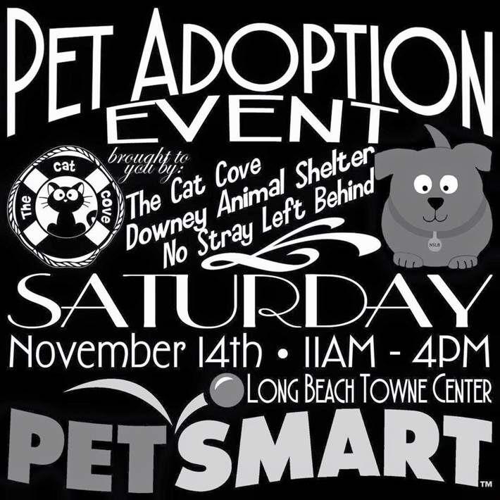 Pet Adoption Event at PetSmart. Long Beach Towne Center