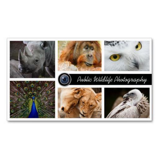 Wildlife photography photographer business card photographer wildlife photography photographer business card colourmoves
