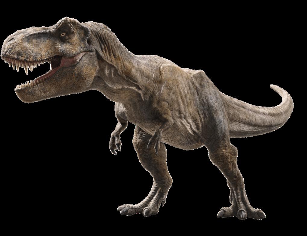 Tyrannosaurus Rex Isla Nublar Film Jurassic Park Wiki Fandom Powered By Wikia Jurassic Park T Rex Jurassic Park Tattoo Jurassic World