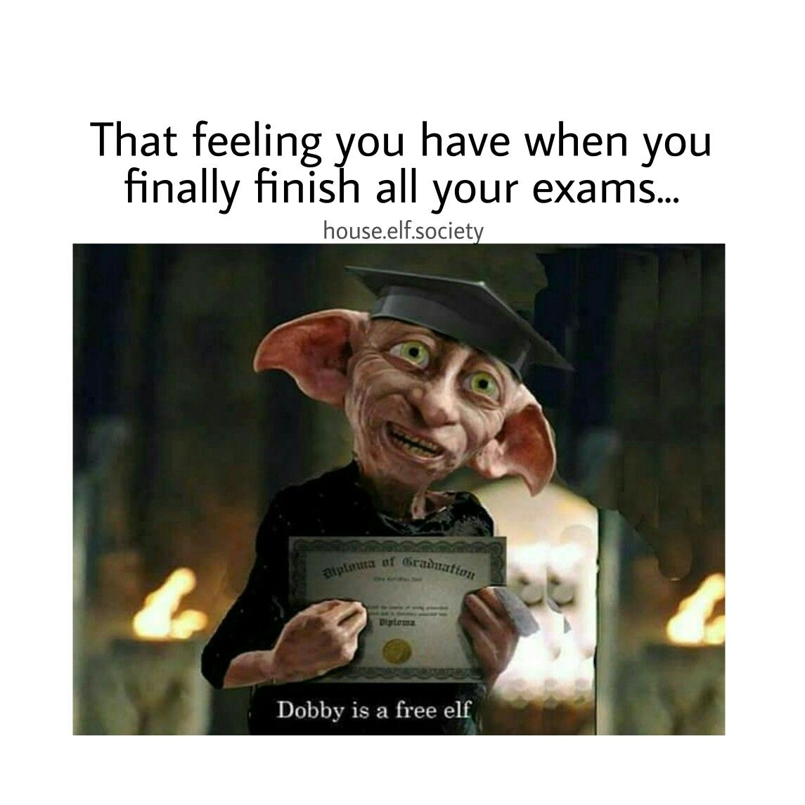 Pin By Dunnecia On Projects Harry Potter Dobby Class Of 2019