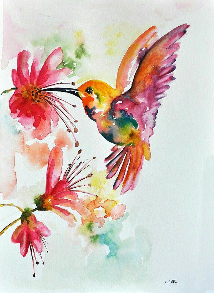 института акварель птицы цветы картинки если возраст пенсионный