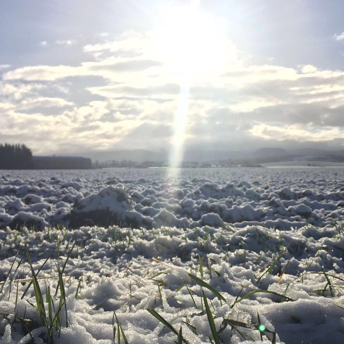 Y la nieve llegó a #Arkaia ... ¡Buen sábado! #turismo #rural junto a #VitoriaGasteiz #inclusivo #conalma #sostenibilidad #responsabilidad #igerseuskadi #igersgasteiz