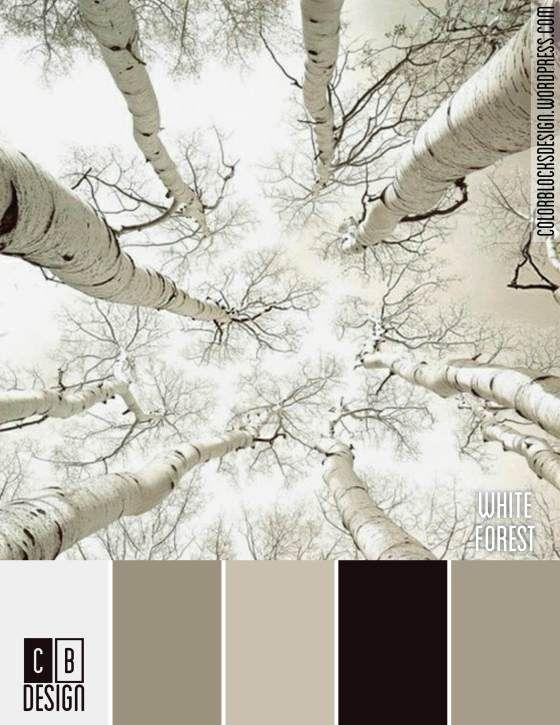 white forest color blocks design color color schemes paint rh pinterest com