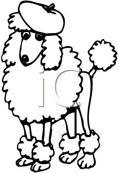 pin by cindy molidor on poodle art pinterest poodle clip art rh pinterest ca french poodle clipart free