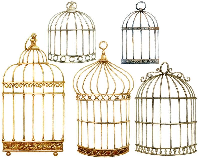 Watercolor Vintage Birds Cage Hand Painted Golden Cage Etsy Vintage Bird Cage Vintage Birds Vintage Bird Wallpaper