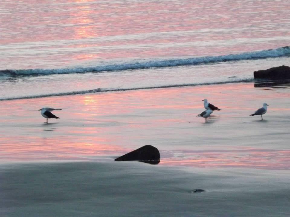 Beaver River beach, Yarmouth County, NOVA SCOTIA