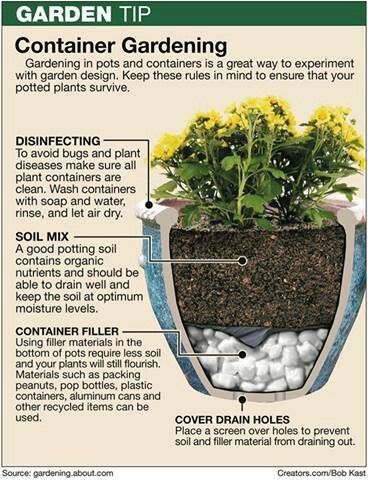 Container Gardening Is Great For Patios And Small Spaces. The Key Is To  Properly Prepare The Container. #gardening #container #pots ...