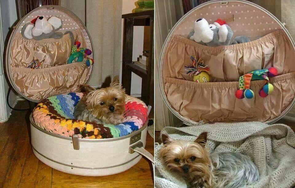 Diy Yorkie Bed Pet Furniture Cute Dog Beds Diy Dog Bed