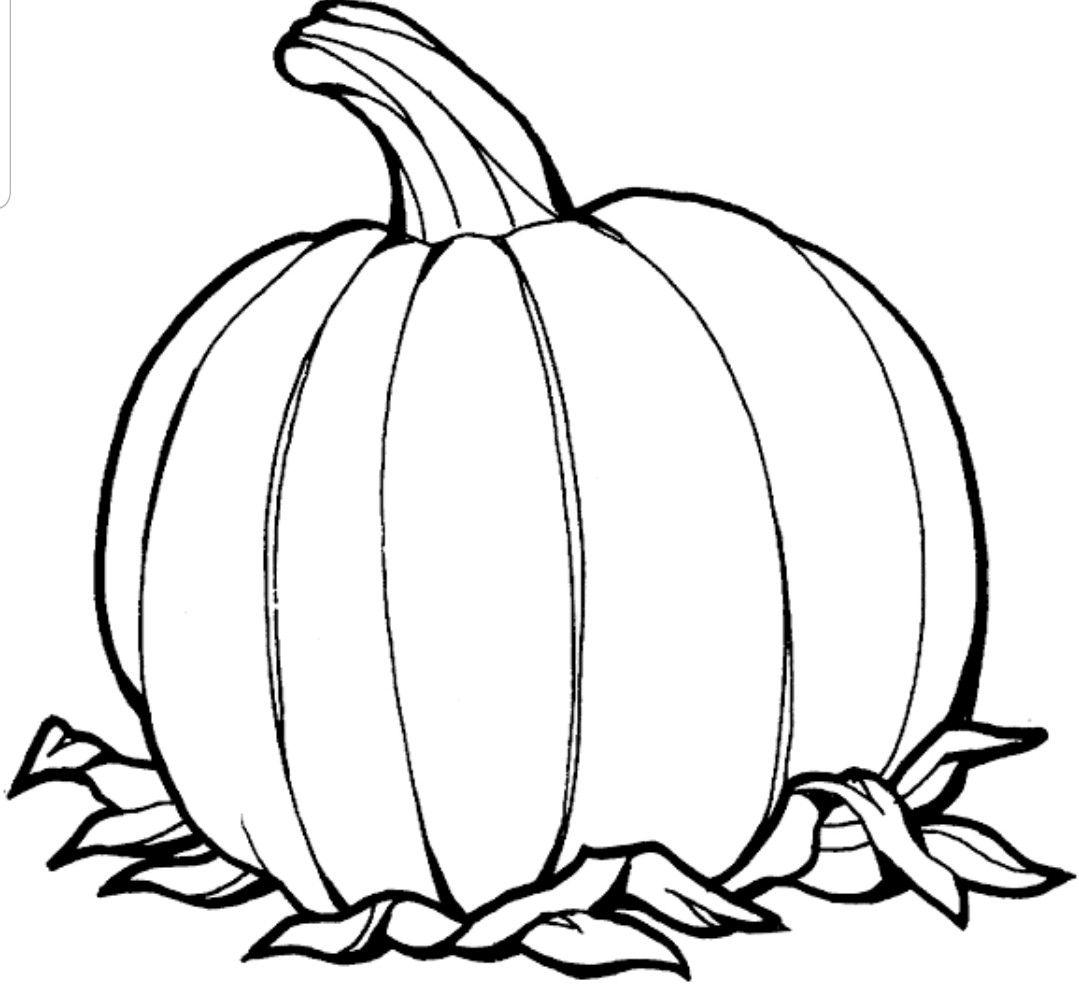Pumpkin Kurbis Ausmalbild Bilder Von Kurbissen Kurbisschablone