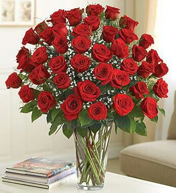 Love the bold red color of these roses