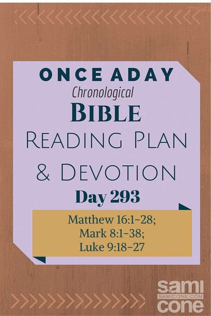 Once A Day Bible Reading Plan & Devotion Day 293