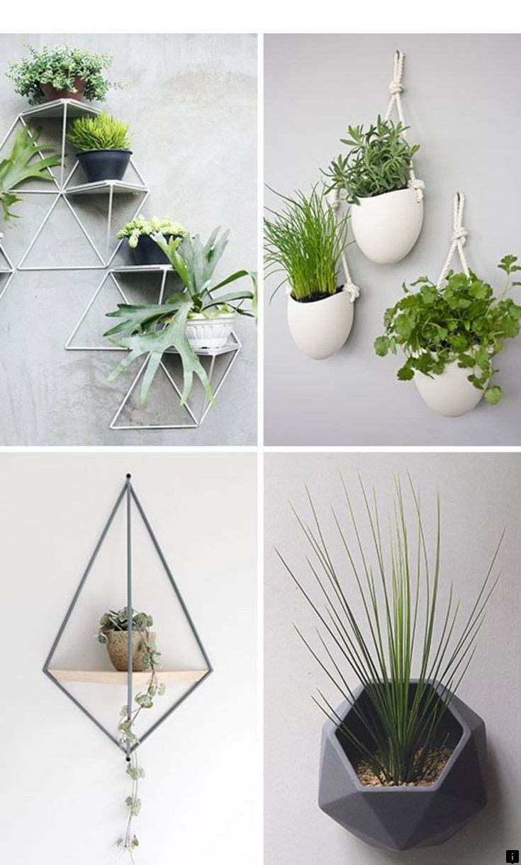 Head To The Webpage To See More About Wall Mount Click The Link To Find Out More Viewin Wall Mounted Planters Wall Mounted Plant Holder Hanging Plants