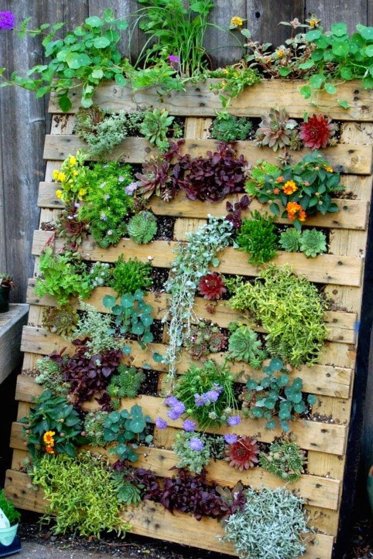 If I Did This They Would All Have To Be Plants That Could Survive - Pallet-garden-ideas
